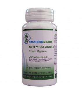 Artemisia Annua Extrakt Kapseln