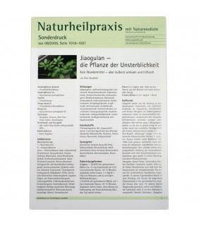Jiaogulan: Naturheilpraxis Sonderdruck