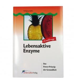 Lebensaktive Enzyme: Das Power-Prinzip der Gesundheit