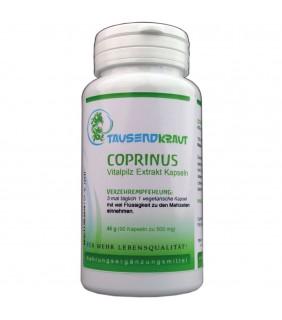 Coprinus Extrakt (90 Kapseln)