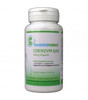 Coenzym Q10 (90 Kapseln á 30mg)