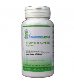 Vitamin B Komplex (90 Kapseln)