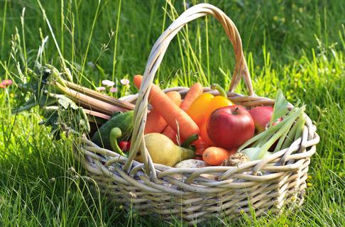 Gemüse & Frucht
